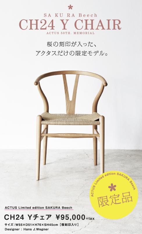 【POP】CH24 限定SAKURA BEECH 縦長